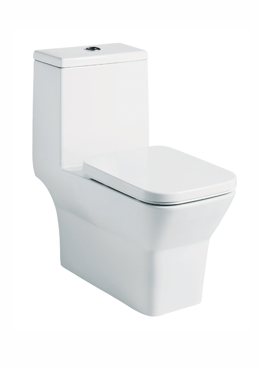 Wall Hung With Cistern